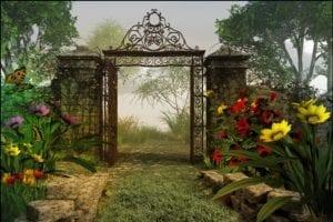 ansia ipnosi il giardino magico